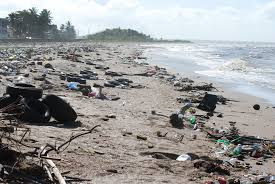 Blog - Shoreline Pollution
