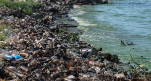 Blog - Water Pollution